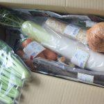 【おーがにっくがーでん】有機野菜の宅配お試しセットは安くておすすめ!