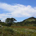【長野】霧ヶ峰高原西部の八島湿原で3歳と2歳の小さな子供とトレッキングしてきた結果・・・