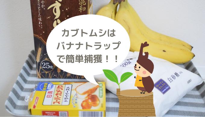 カブトムシはバナナトラップで簡単捕獲