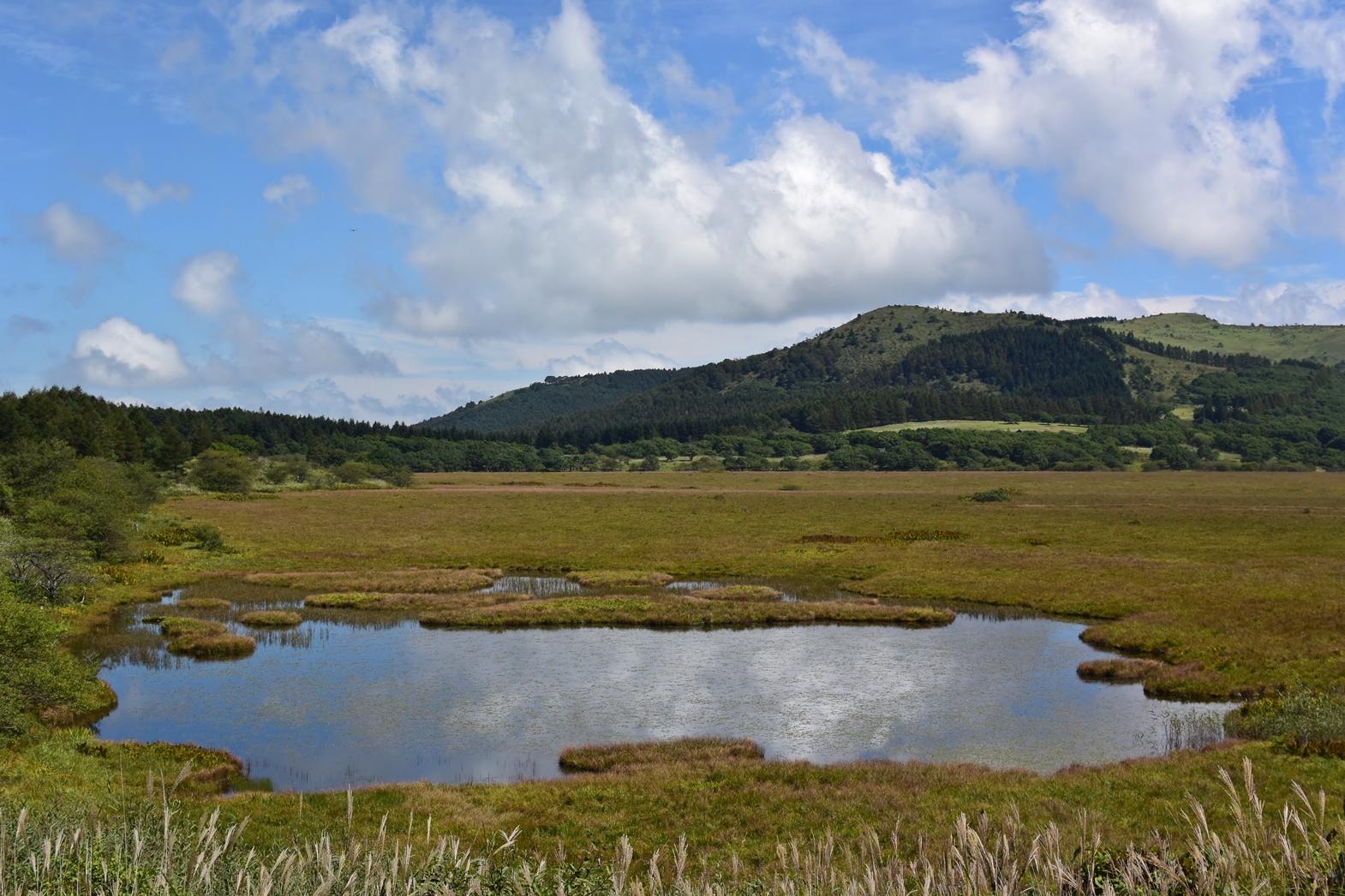 長野県霧ヶ峰高原八島湿原:八島ヶ池