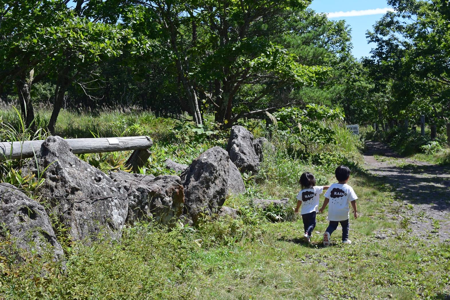 長野県霧ヶ峰高原八島湿原:仲良く進む年子
