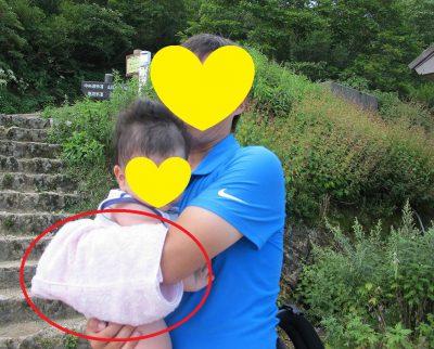 伊吹山で赤ちゃんと子連れ登山