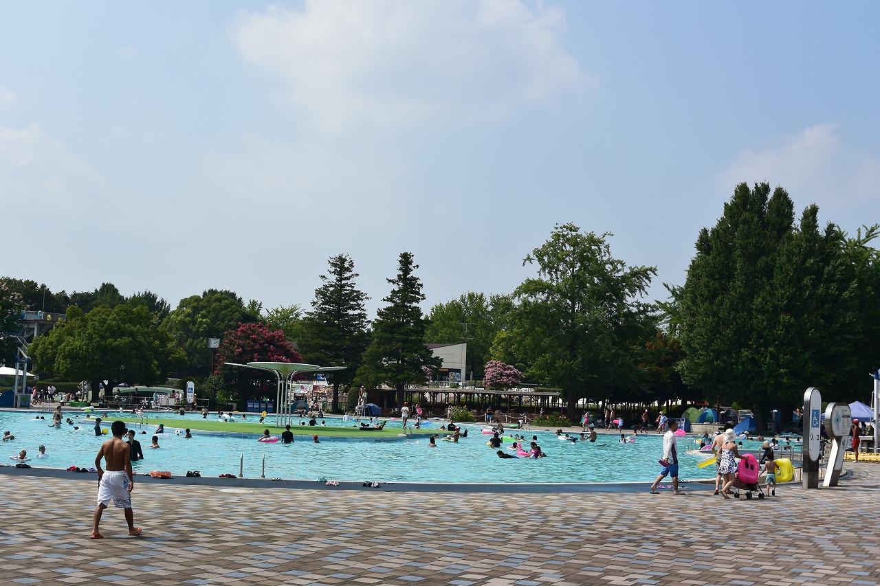 【駐車場の裏技あり!】昭和記念公園のプールは駐車場から大混雑!半額で楽しめる14時からのサンセットチケットが断然おすすめ!