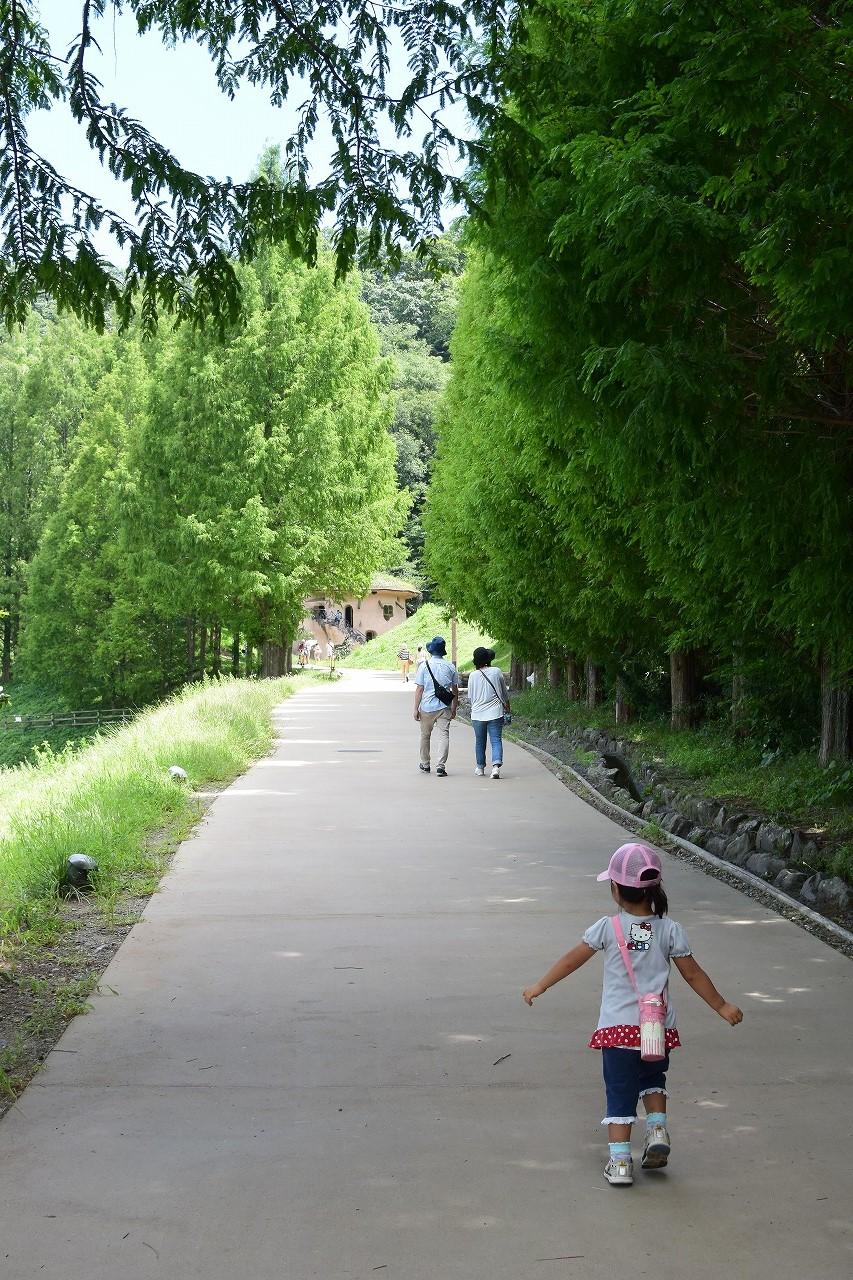 ムーミン谷トーベ・ヤンソンあけぼの子どもの森公園への徒歩ルート