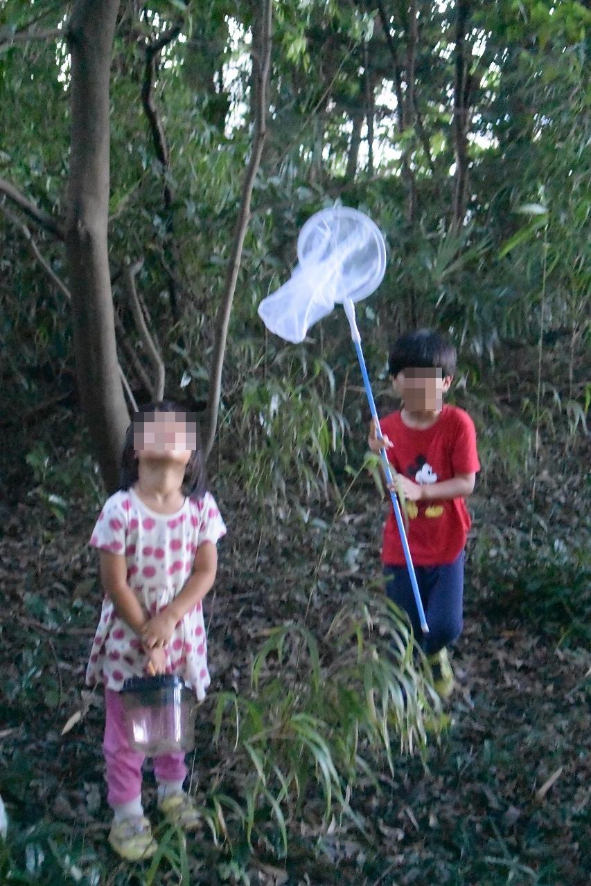 カブトムシ捕獲用トラップを仕掛けに子どもたちと雑木林へ