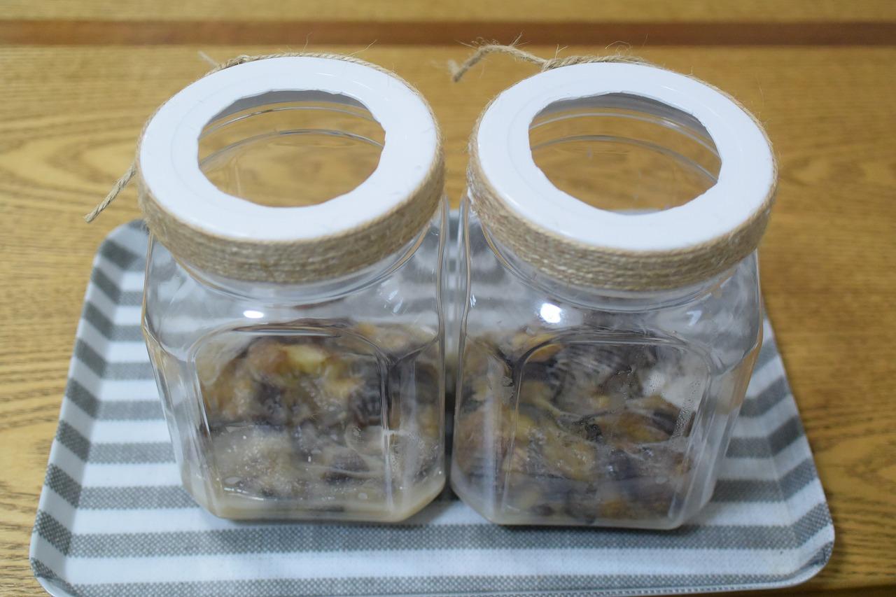 カブトムシ捕獲用バナナトラップ二回目作成中6