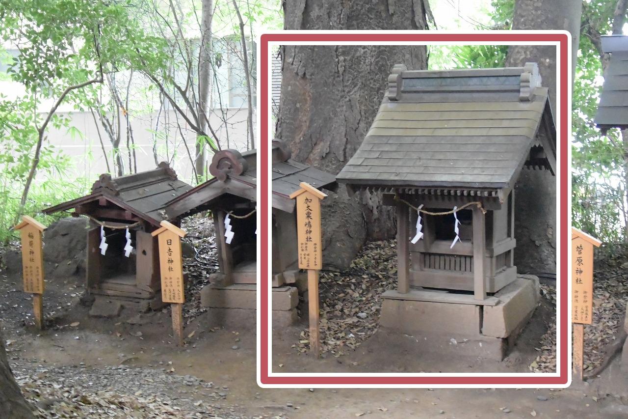 川越氷川神社の加太粟島神社