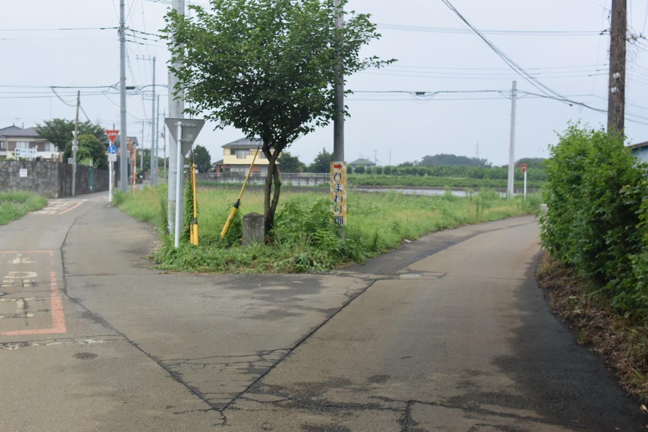 所沢ひまわり畑までのバス停からの徒歩ルート
