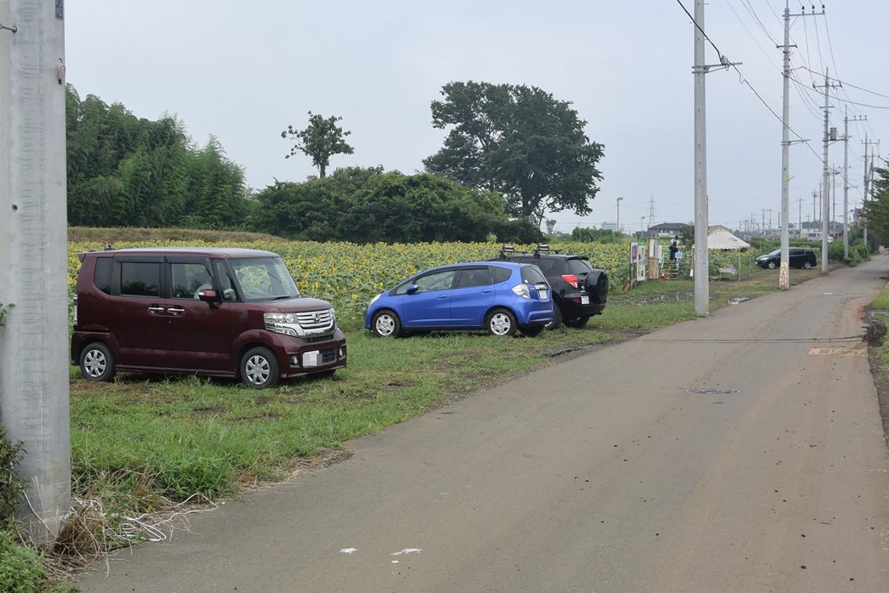 所沢ひまわり畑の駐車場