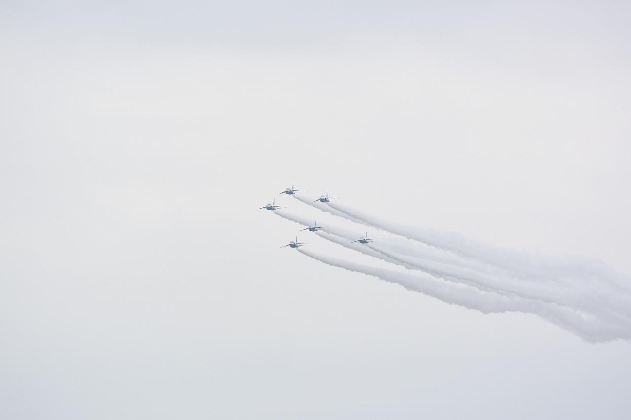 入間基地航空祭2019年ブルーインパルス課目(ツリー・ローパス)