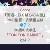 Cocco「海辺に咲くばらのお話」のPV監督・衣装担当はCoccoの息子?20歳の大学生「TON TON GARNET」とは?