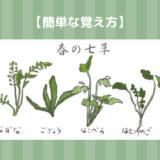 春の七草の簡単な覚え方
