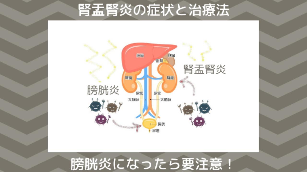 腎盂腎炎 治療