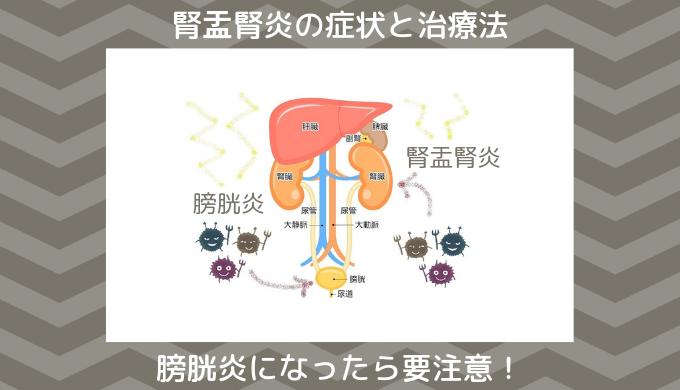 腎盂腎炎と膀胱炎の治療法