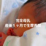 完全母乳1ヶ月で生理再開