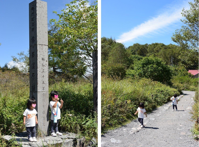 長野県霧ヶ峰高原八島湿原と小さな子ども達