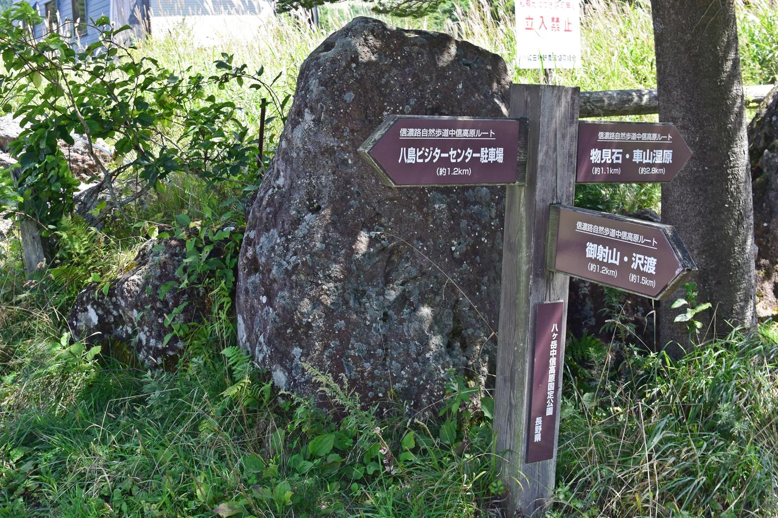 霧ヶ峰高原八島湿原:休憩した場所