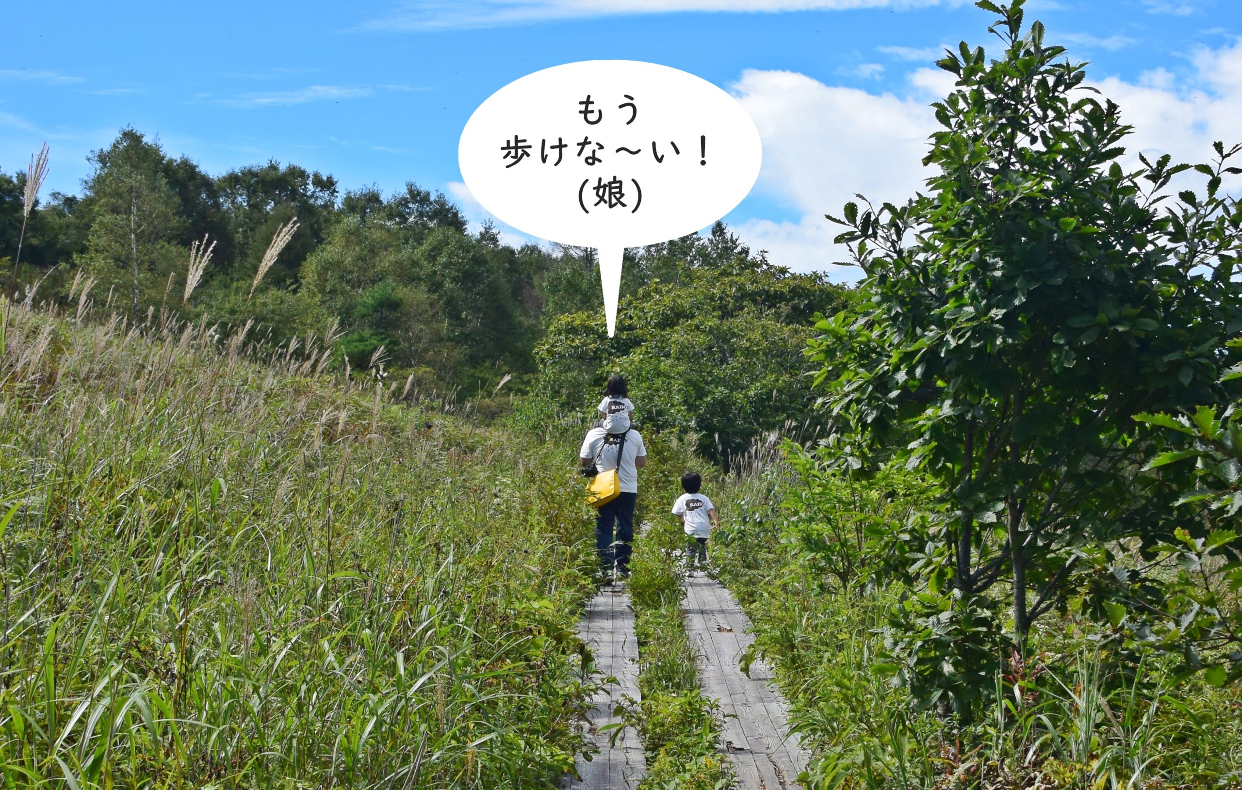 霧ヶ峰高原八島湿原:突然電池切れする娘