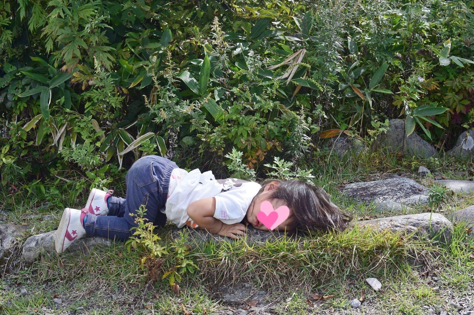 霧ヶ峰高原八島湿原:すねて動かなくなる娘