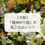 大阪舞洲ゆり園の見ごろ