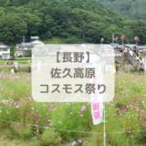 長野県佐久高原コスモス祭り