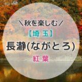 秋の「長瀞」は紅葉の名所!荒川ライン下りと紅葉まつりを楽しもう