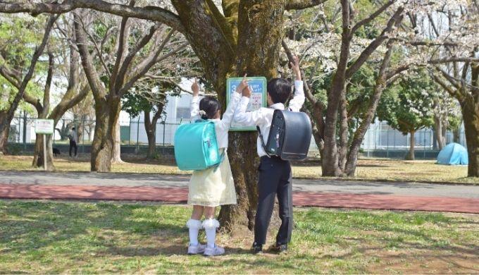セイバン天使の羽モデルロイヤルトゥインクルのパールグリーン